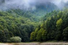 "Nationalpark ""Biogradska Gora"""