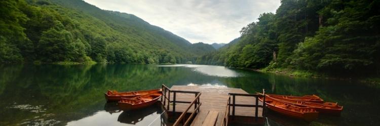 /db_assets/images/blog_cover/parco-nazionale-biogradska-gora-109257-750x250.jpg