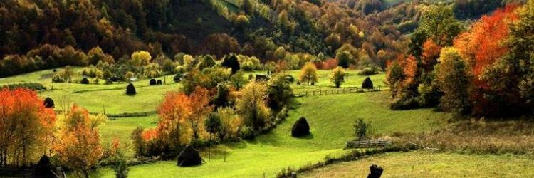 /db_assets/images/blog_cover/zlatibor-109512-750x250.jpg